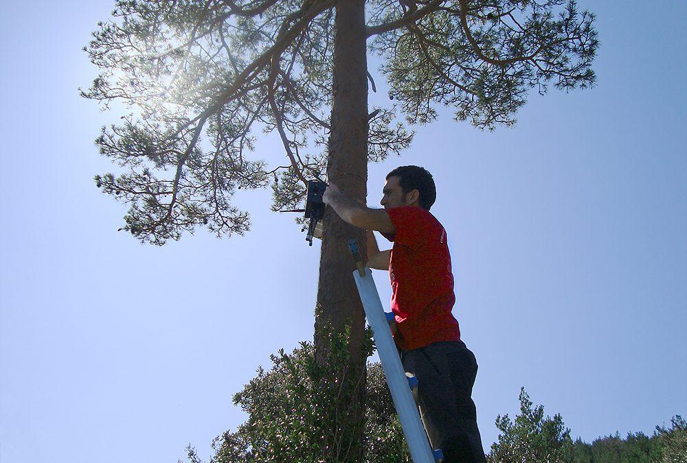Détecter les incendies de forêt avant qu'il ne soit trop tard ! [Expérience Client – Smart Cities]